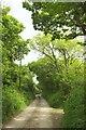 SX2196 : Track, South Dinnicombe by Derek Harper