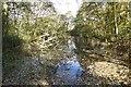 SE6150 : Lake end by DS Pugh