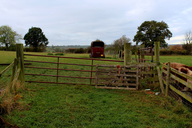 Pasture off Jewitt Lane