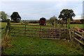SE3945 : Pasture off Jewitt Lane by Chris Heaton
