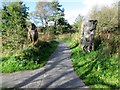 SE5183 : Wooden sculptures at Sutton Bank National Park Centre by Peter Holmes
