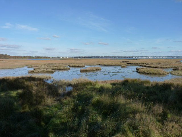 A view from the hide at RSBP Arne Nature Reserve