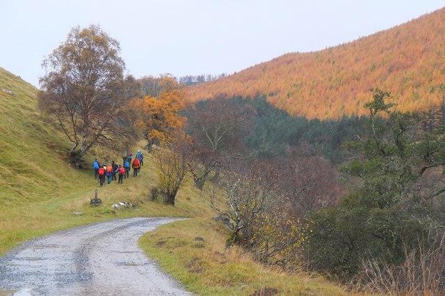 Path leaves the estate road, Glen Tilt
