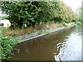 SJ3125 : Brick overflow weir, north bank, Montgomery Canal by Christine Johnstone