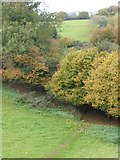 SX9491 : Autumn colour and waymarked path, Pynes Hill, Exeter by David Smith
