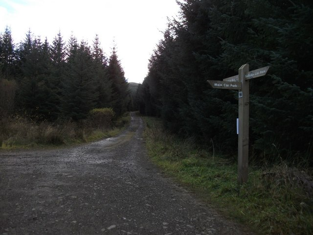 Path junction in Carron Valley Forest