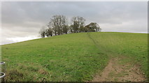 ST7167 : Kelston  Round Hill by Dr Duncan Pepper