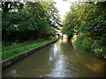 SJ6475 : Trent & Mersey Canal between bridges 199 and 200 by Christine Johnstone