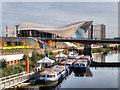 TQ3784 : Waterworks River and London Aquatics Centre by David Dixon