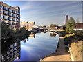 TQ3784 : River Lee Navigation at Stratford by David Dixon