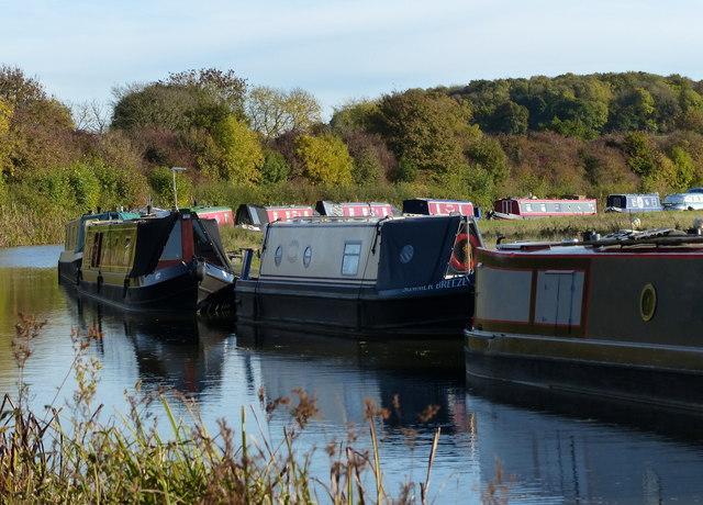 Narrowboats moored along the Ashby Canal