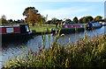 SK3706 : Narrowboats moored along the Ashby Canal by Mat Fascione