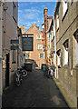 TL4458 : Up Laundress Lane by John Sutton