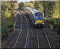 J4781 : Train, Crawfordsburn by Rossographer