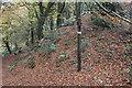 ST1990 : Sirhowy Valley Walk signpost, Craig-goch by M J Roscoe