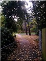 SZ0791 : Bournemouth: footpath B02 arrives on the Gardens by Chris Downer