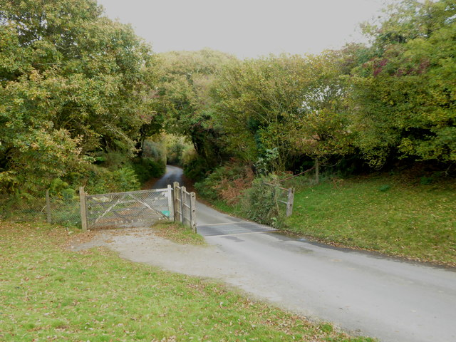 Cattle grid on the edge of the common at North Bowda
