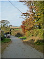 SX2679 : The road from Trevadlock to Trevadlock Cross by Rod Allday