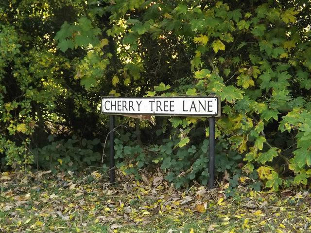 Cherry Tree Lane sign