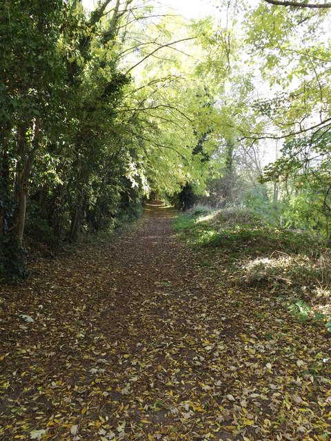 Lea Valley Walk Bridleway to Batford Mill