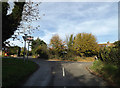 TL1614 : Cherry Tree Lane, Lea Valley, Wheathampstead by Geographer