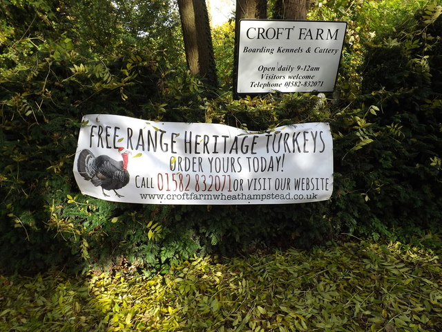 Croft Farm sign & Poster