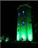 NJ0459 : Nelson Tower in Green by Anne Burgess