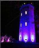 NJ0459 : Nelson Tower in Purple by Anne Burgess