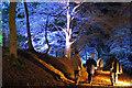 NJ0458 : Path on Cluny Hill by Anne Burgess
