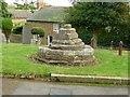 SK7624 : Medieval cross base, Scalford churchyard by Alan Murray-Rust