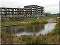 TQ4582 : Barking Riverside by Marathon