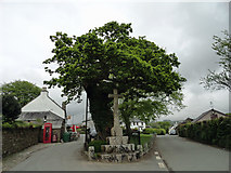 SX5467 : The village cross in Meavy by Phil Gaskin