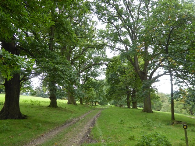 Carriage drive in Levens Park