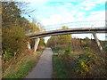 NZ3154 : Cycle path through Washington by Malc McDonald