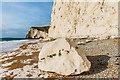SY8080 : Chalk boulder below Swyre Head by Ian Capper