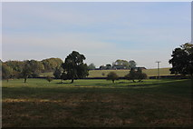 TL1504 : Hedges Farm by Robert Eva