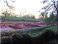 SX8963 : Pits for silt from lake drainage, Cockington by David Hawgood