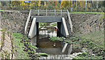 J3673 : Culvert, Grand Parade, Belfast (November 2016) by Albert Bridge