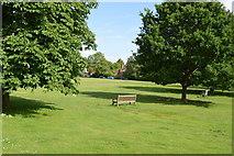 TQ5446 : Village Green by N Chadwick