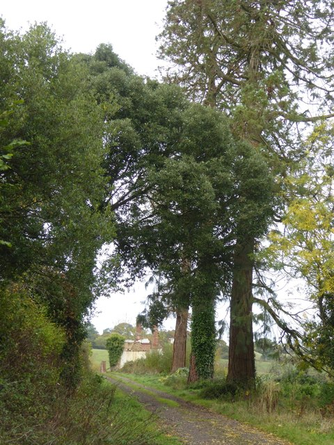 Bridleway to Lower Rollestone, north of Exeter
