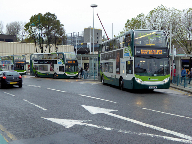 Buses on Wellington Road South