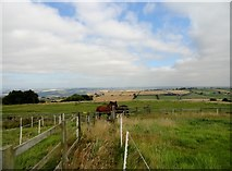 NZ0759 : Fields behind the village street at Hedley on the Hill by Robert Graham