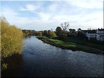 NZ2115 : River Tees at Piercebridge by David Brown