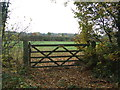 TL6537 : Five Bar Gate by Keith Evans