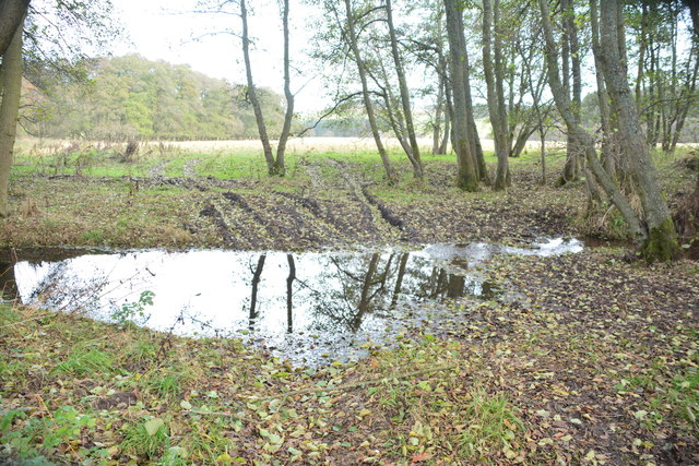 Ford at Holystone
