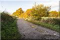 SK8375 : Marsh Lane, Laughterton by Julian P Guffogg