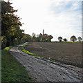 TL4255 : A permissive path near Grantchester by John Sutton