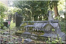 SP5206 : Moss on a Tomb by Bill Nicholls