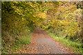 SX0267 : Camel Trail by Guy Wareham