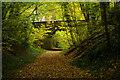 TL2313 : Ayot Greenway, Welwyn Garden City by Stephen McKay